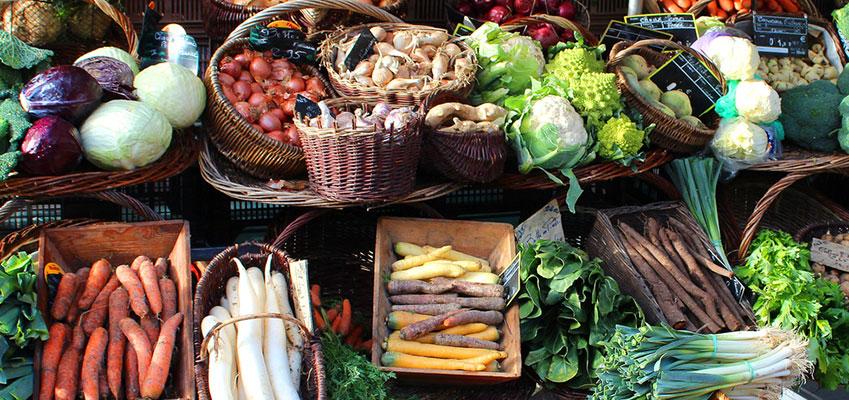 Vegetarisch dating niet vegetarisch online dating telefoon oplichting